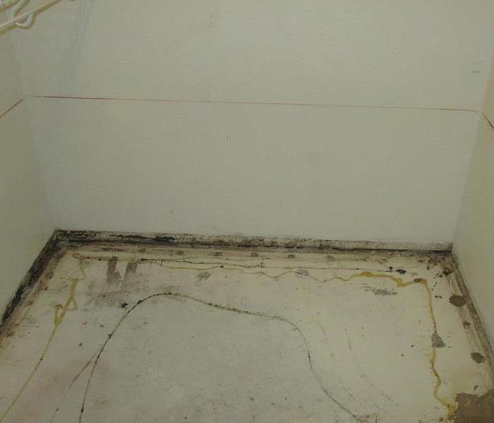 Inside of a walk in closet where the floors and baseboards are removed and the wall is covered in mold at the base