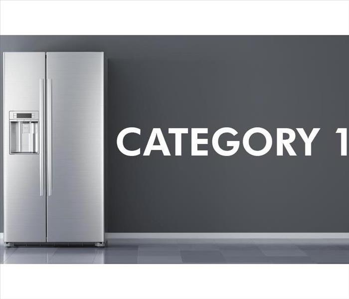 Refrigerator with the phrase Category 1