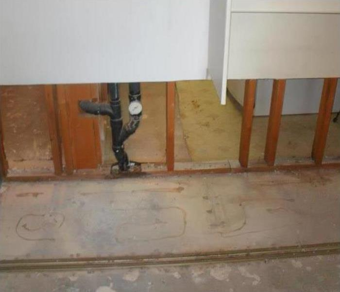 Mold Remediation What Do Mold Removal Professionals Do?