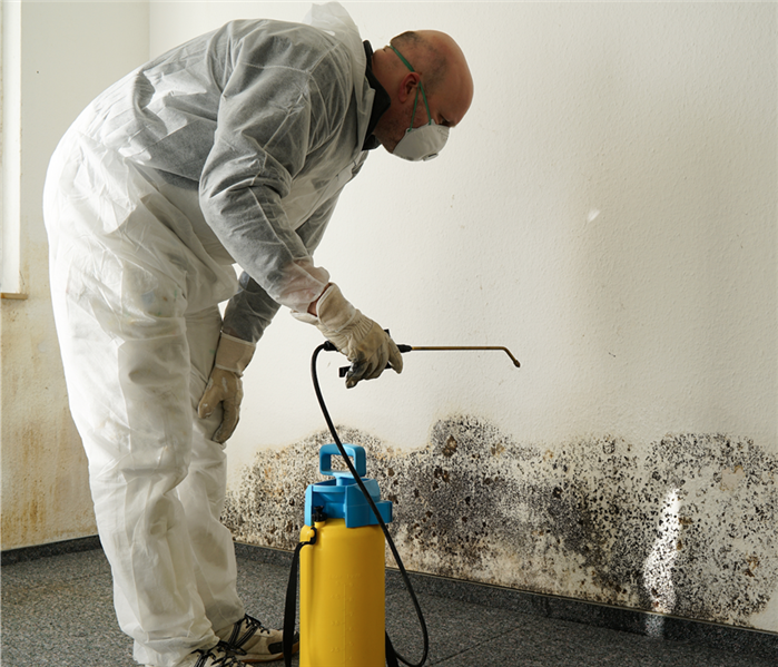 Mold Remediation FAQs About Protective Equipment Used in Mold Remediation