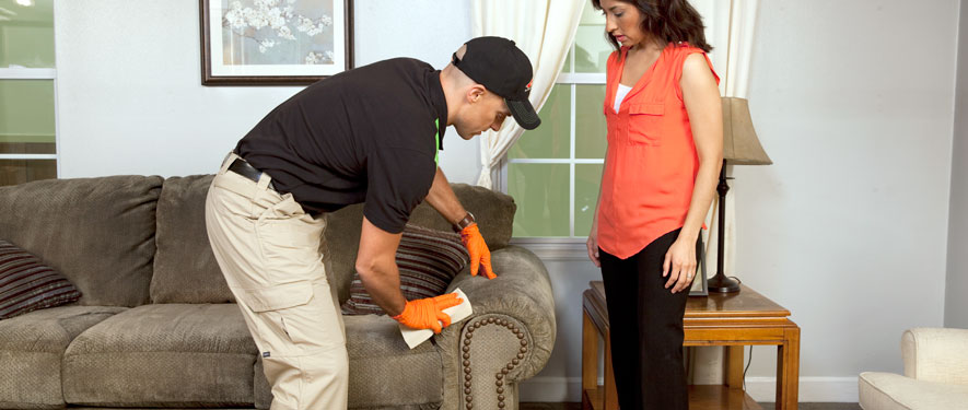 Peoria, AZ carpet upholstery cleaning